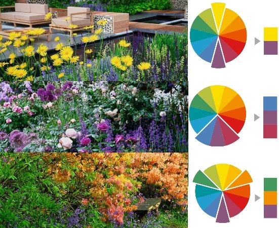 10 правил создания цветника: как не допустить типичные ошибки