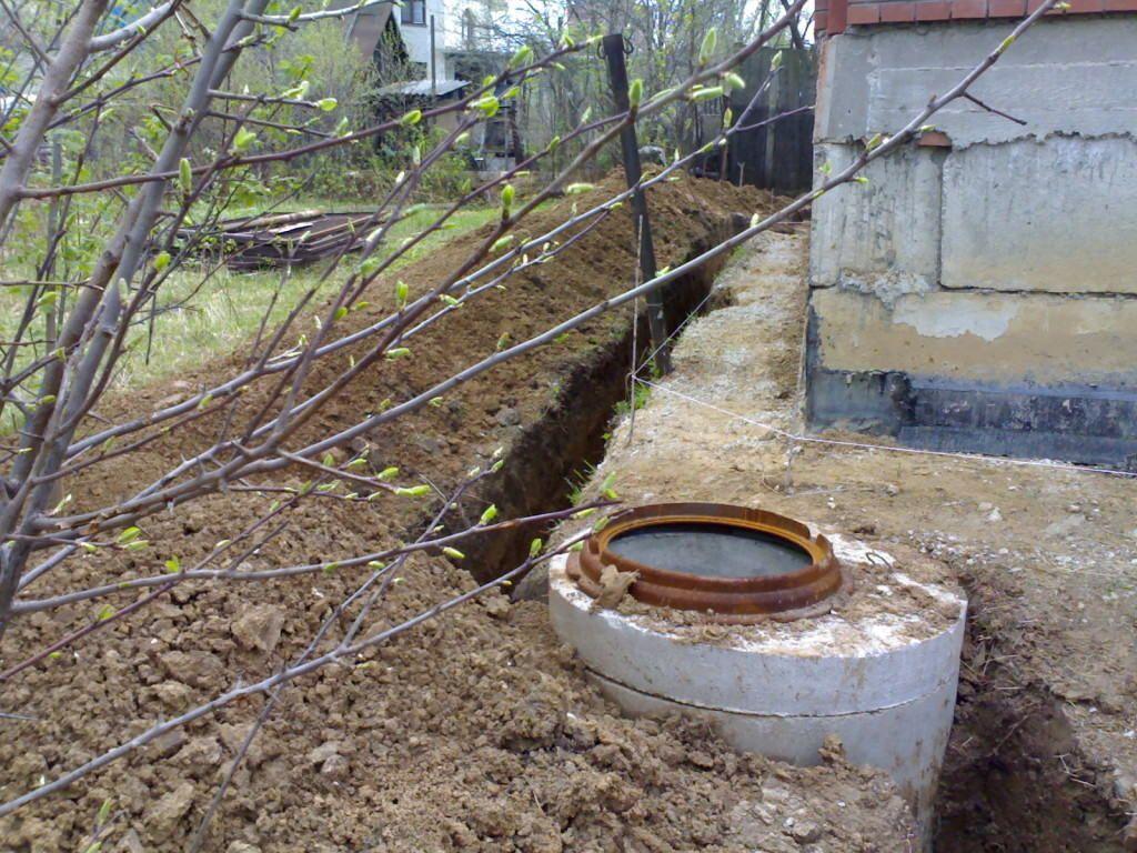 Как определить уровень грунтовых вод на участке — для строительства дома и в других случаях