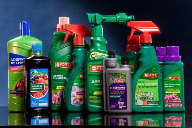 Чем заменить фунгицид в домашних условиях: ингредиенты и как использовать