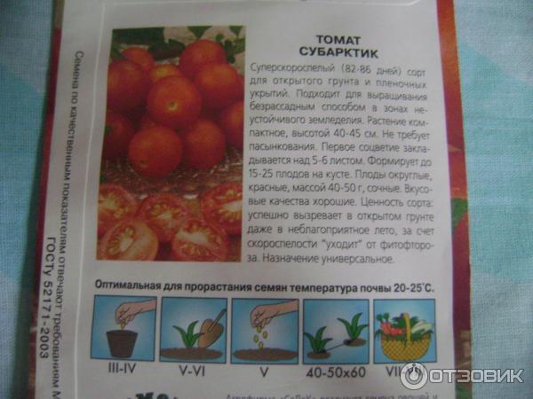Безрассадный метод выращивания помидор - выбирайте семена