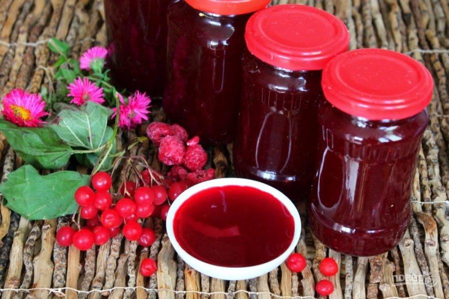Разнообразные рецепты заготовок на зиму из красной калины