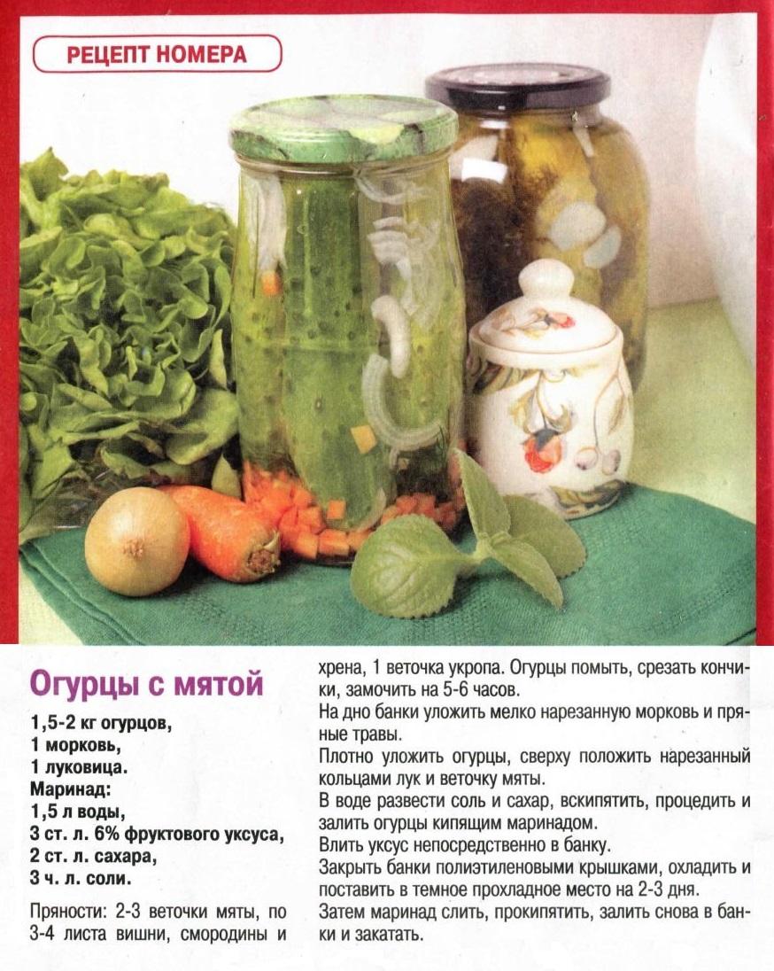 11 лучших рецептов маринования кабачков с чесноком на зиму