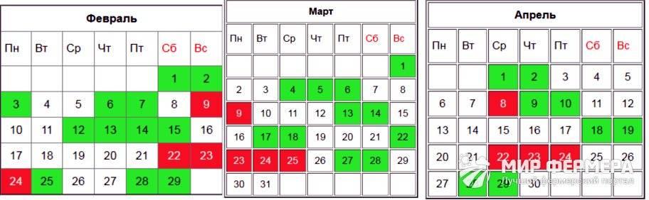 Когда сажать огурцы: посадочные дни по лунному календарю на май 2021 года