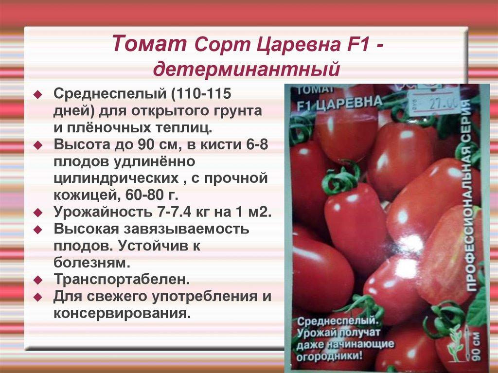 """Томат """"красный купол"""": описание сорта, характеристики помидоров, рекомендации по уходу русский фермер"""