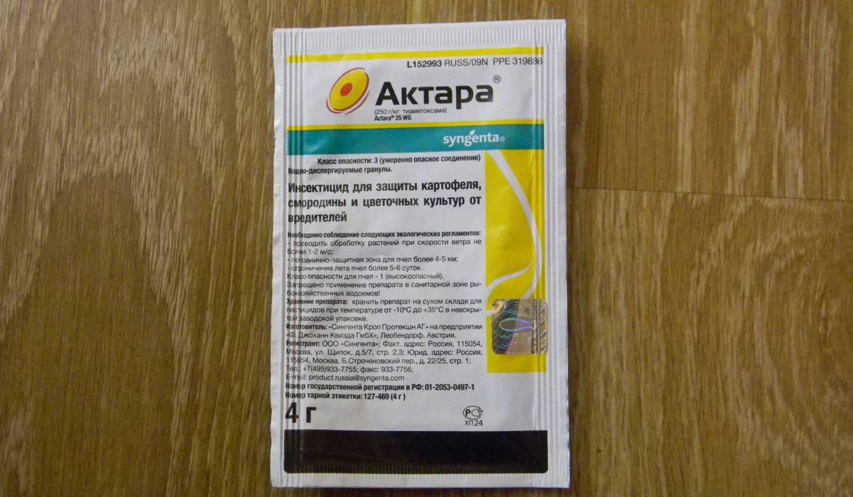 Актара для огурцов: инструкция по применению в теплице и открытом грунте для защиты от вредителей