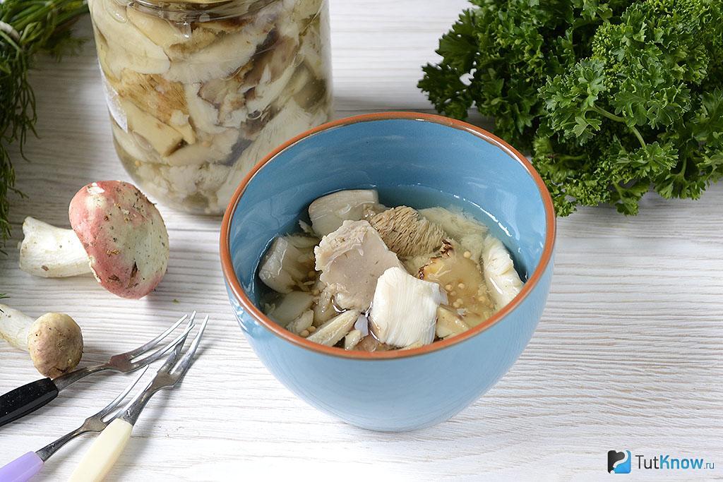 Как солить горькушки – польза, вред и лучшие рецепты засолки грибов