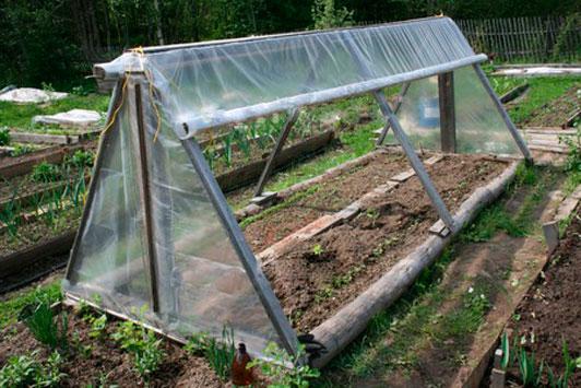 Парник для помидоров своими руками | садоводство и огородничество