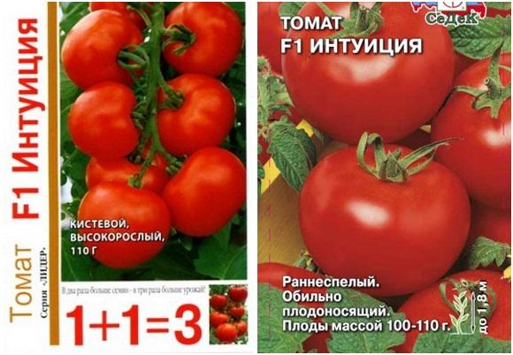 Описание и характеристики томатов сорта Евпатор, урожайность и выращивание