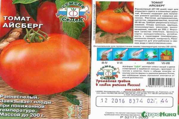 Описание томата Айсберг, характеристика и правила выращивания сорта, отзывы