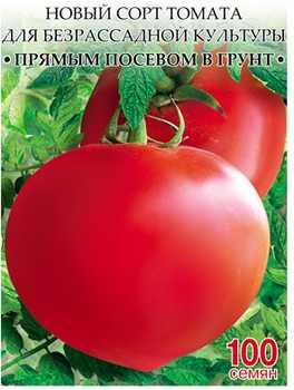 Выращивание томатов в открытом грунте семенами и рассадой: лучшие сорта и схемы