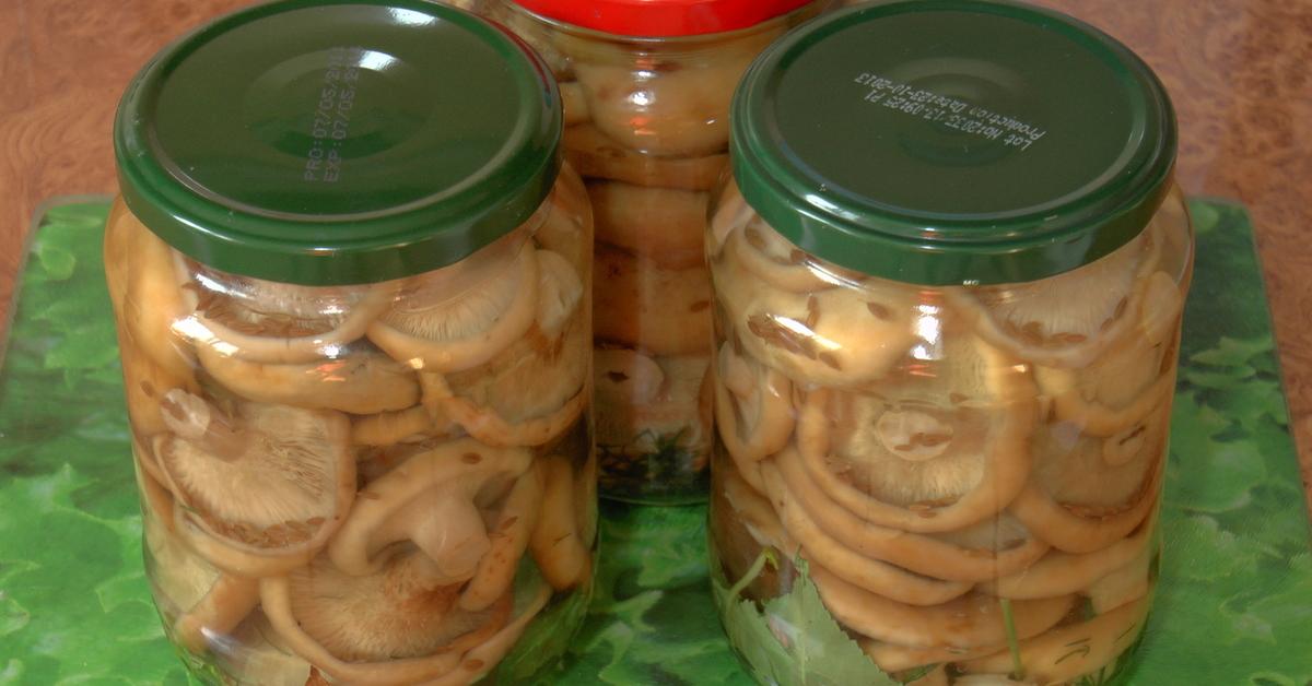Маринованные грузди на зиму – 10 рецептов приготовления с пошаговыми фото