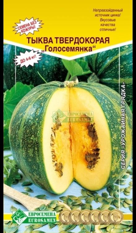 Тыква голосемянная: характеристика и описание длинноплодного сорта с фото
