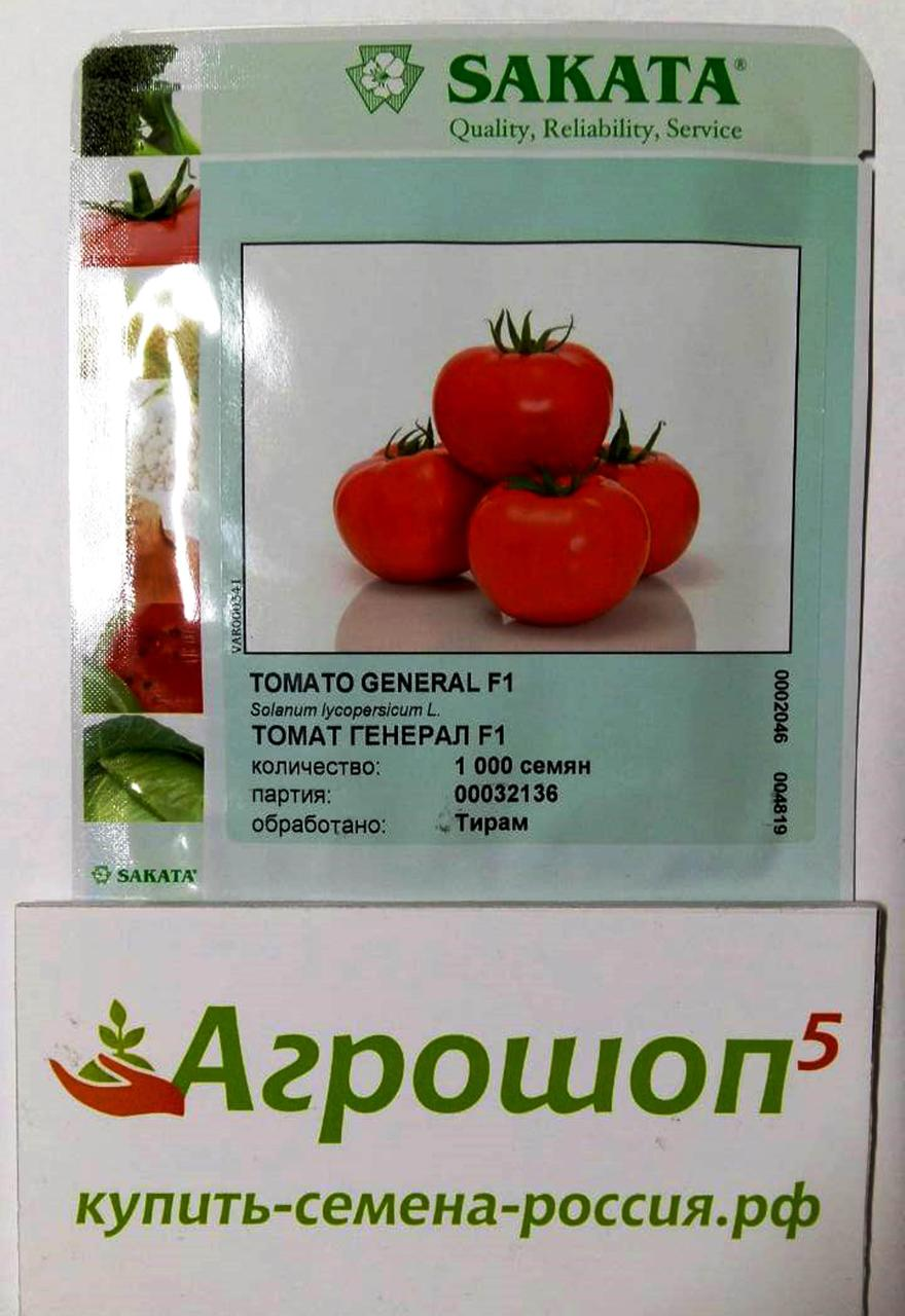 Детерминантные и индетерминантные сорта томатов — различие и особенности выращивания