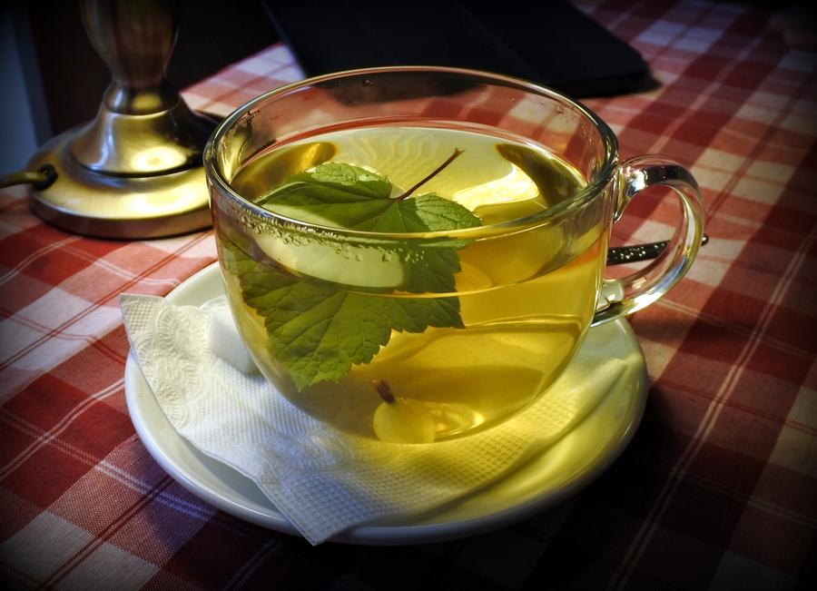 Листья черной смородины: лечебные и полезные свойства, противопоказания, чая, настоя, настойки, отвара, ванны   народная медицина