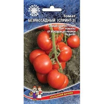 Безрассадный способ выращивания томатов − в открытом грунте, в теплице, как и когда сажать