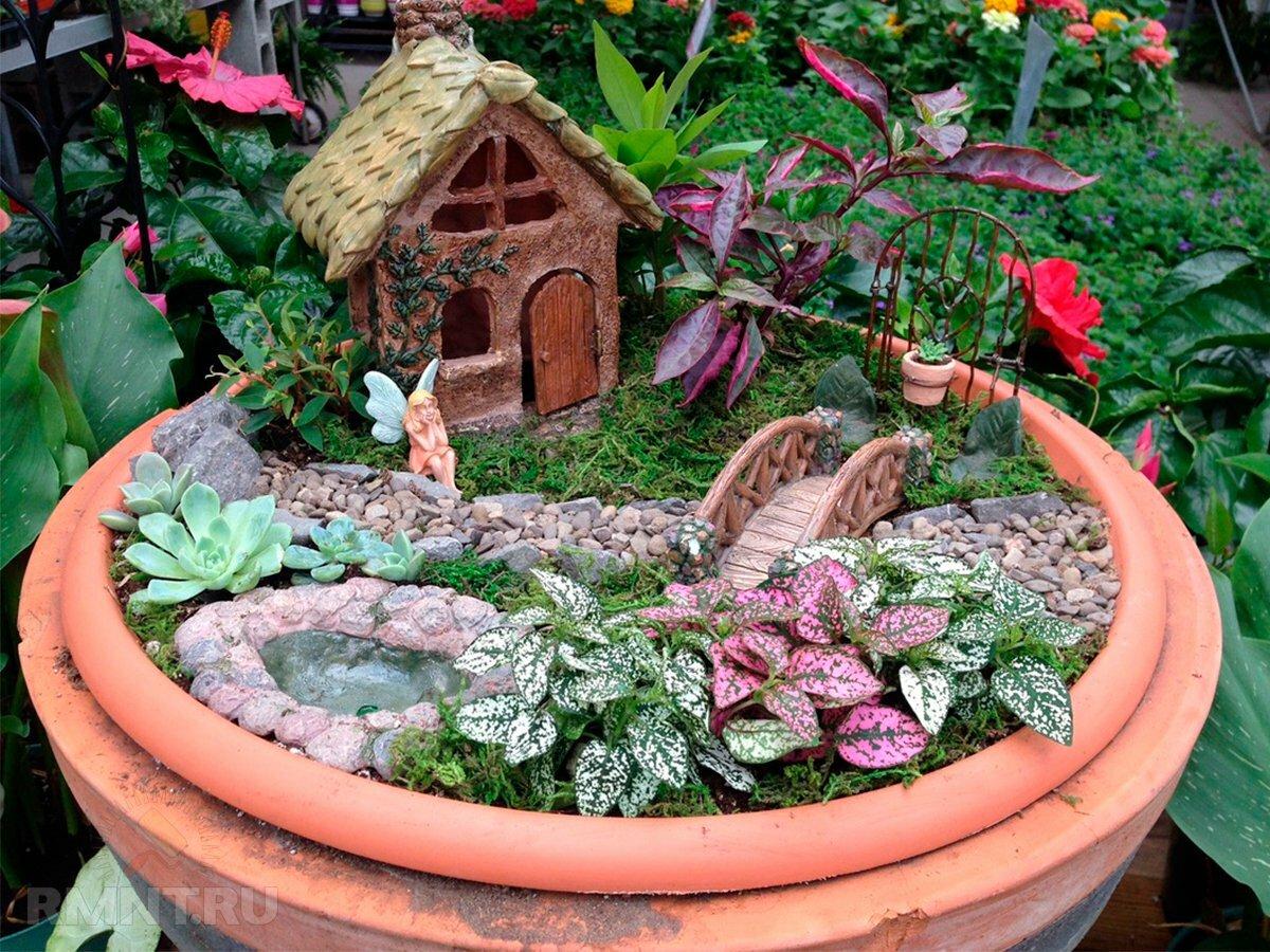 Мини-сад в горшке: варианты обустройства композиции - строй-хауз