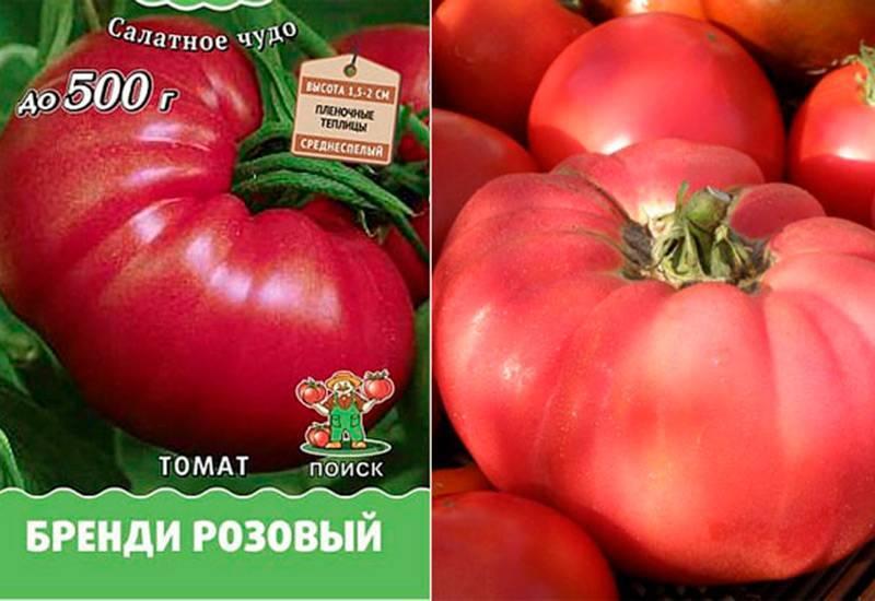 Томат розовые щечки: описание сорта помидора, характеристики, выращивание и фото русский фермер