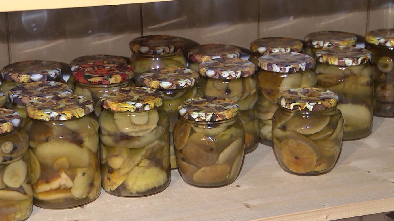 Маринованные грибы на зиму: проверенные рецепты с уксусом