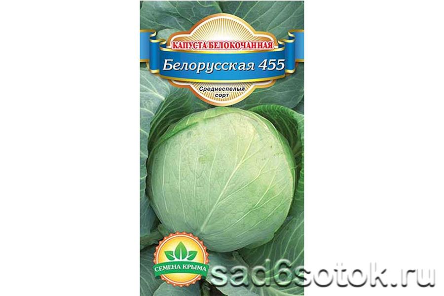 Капуста белорусская: характеристики сорта и советы по уходу и посадке