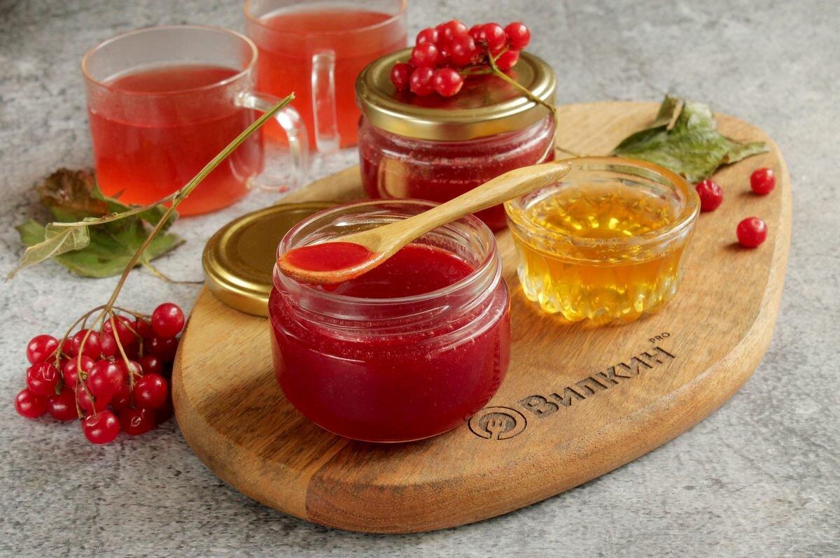 Калина красная — полезные свойства, заготовка на зиму и способы приготовления: лучшие рецепты. варенье из калины на зиму: польза и вред, рецепты