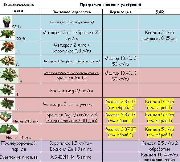 Удобрение персика осенью, сроки выполнения работ, перечень необходимых веществ, способы внесения удобрений и выбор составов в зависимости от целей