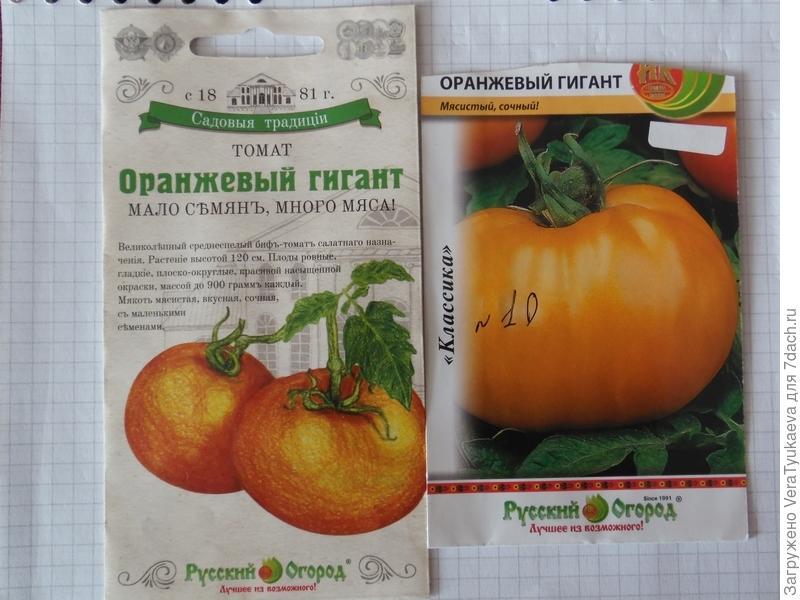 """Томат """"сахарный бизон"""": характеристика и описание сорта, советы по выращиванию и фото помидоров русский фермер"""