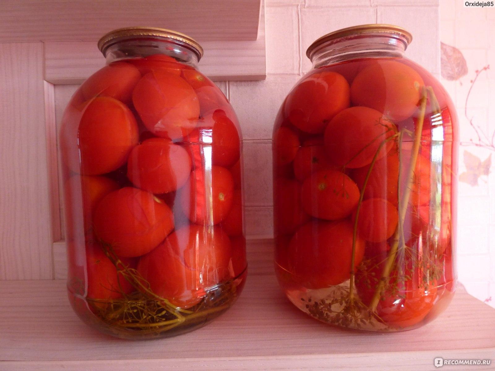 Популярные рецепты помидоров на зиму по-чешски пальчики оближешь