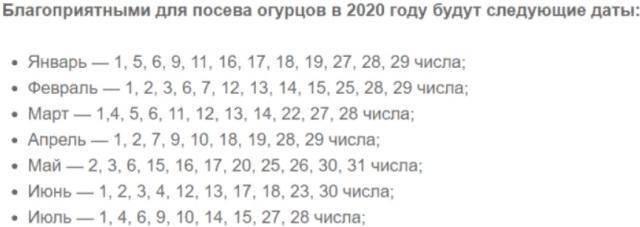 Посадка огурцов на рассаду в 2021 году: благоприятные дни когда сажать