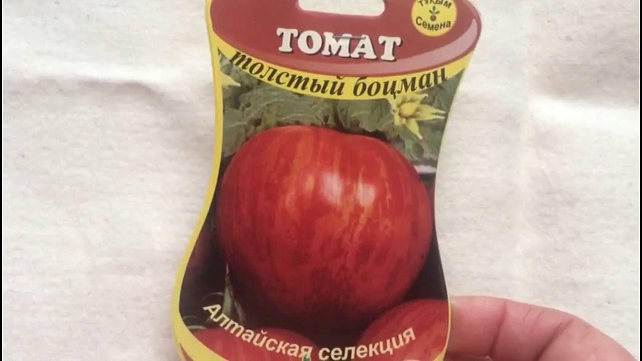 """Томат """"толстый боцман"""": описание, характеристики сорта и фото русский фермер"""