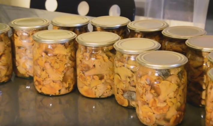 Лисички маринованные на зиму рецепты приготовления