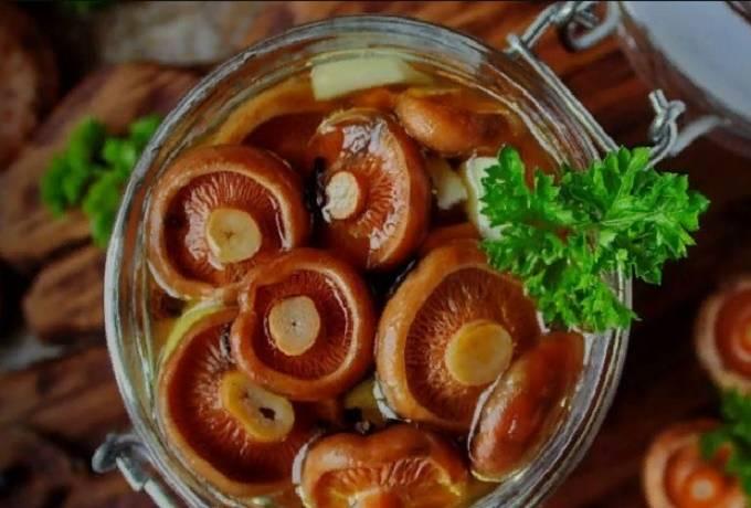 Маринованные и соленые рыжики - пошаговый рецепт с картинками