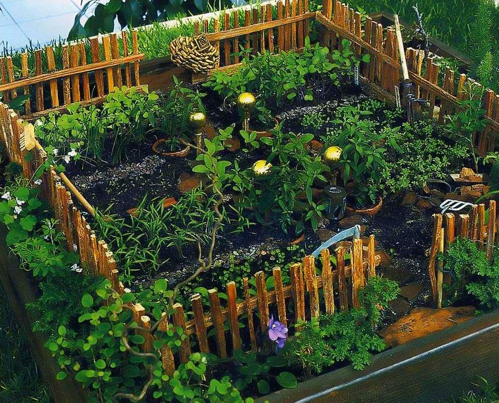 Огород на подоконнике: как организовать, что можно выращивать, правила ухода