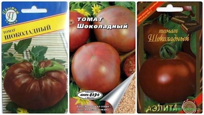 Томат шоколадный - описание сорта, характеристика, урожайность, отзывы, фото