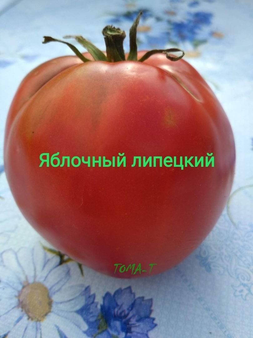 Томат яблочные характеристика и описание сорта