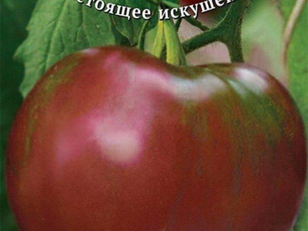 Описание и характеристика сорта томата черная лакомка – дачные дела