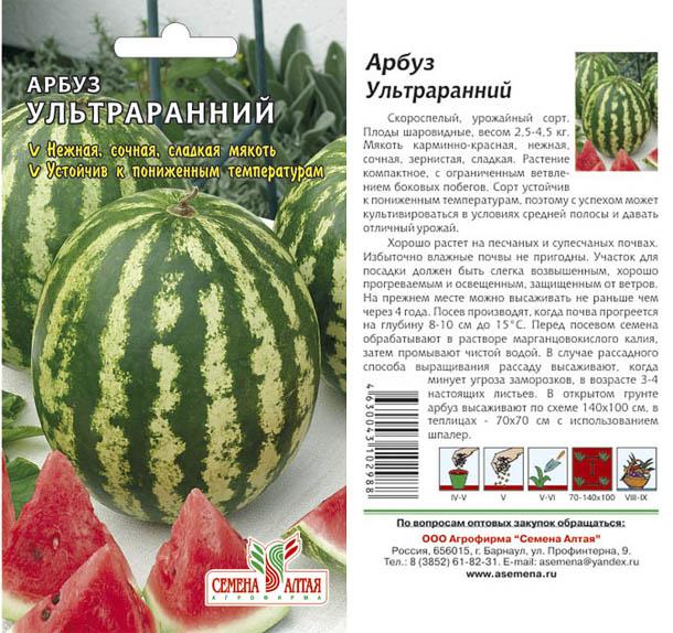 Арбуз продюсер описание сорта характеристика и выращивание с фото