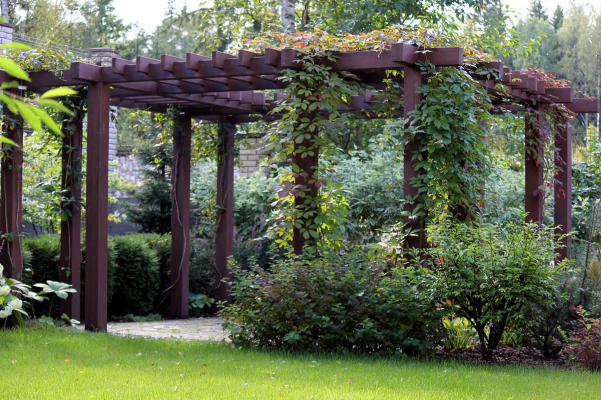 Арки для винограда (36 фото): из металла и дерева. как сделать своими руками из пластиковых труб? размеры садовых арок