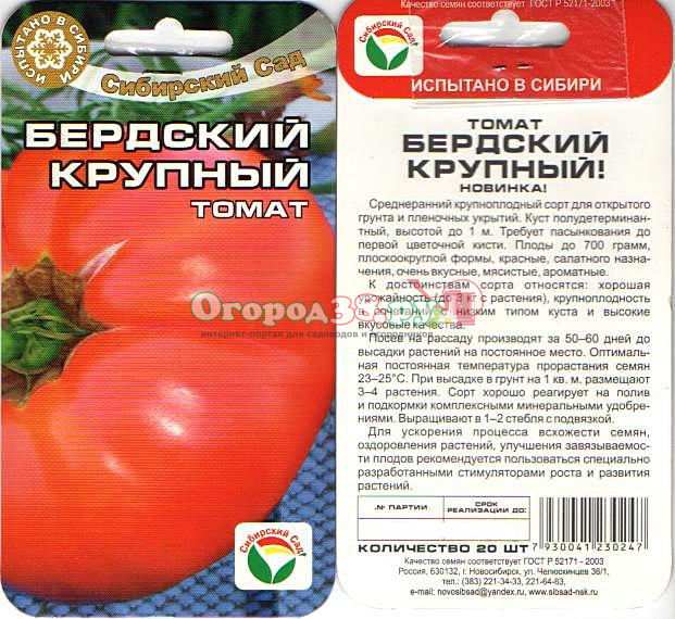 Описание крупноплодного сорта томата сибирские шаньги