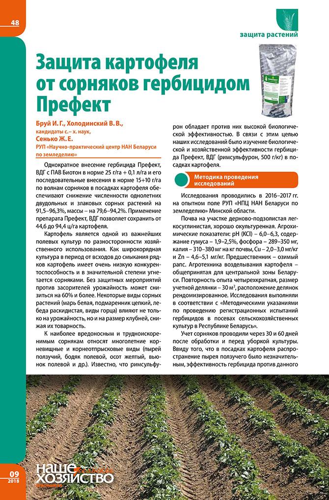 Описание гербицидов для обработки лука и инструкция по применению от сорняков