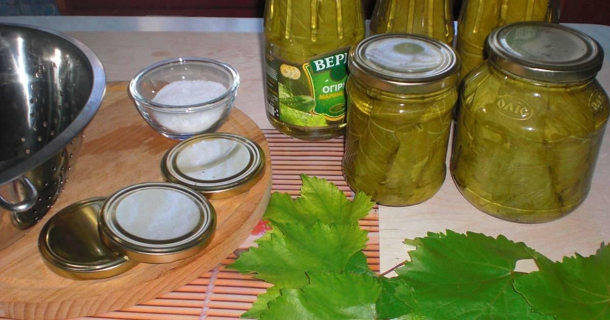 Как заготовить виноградные листья на зиму для долмы: советы