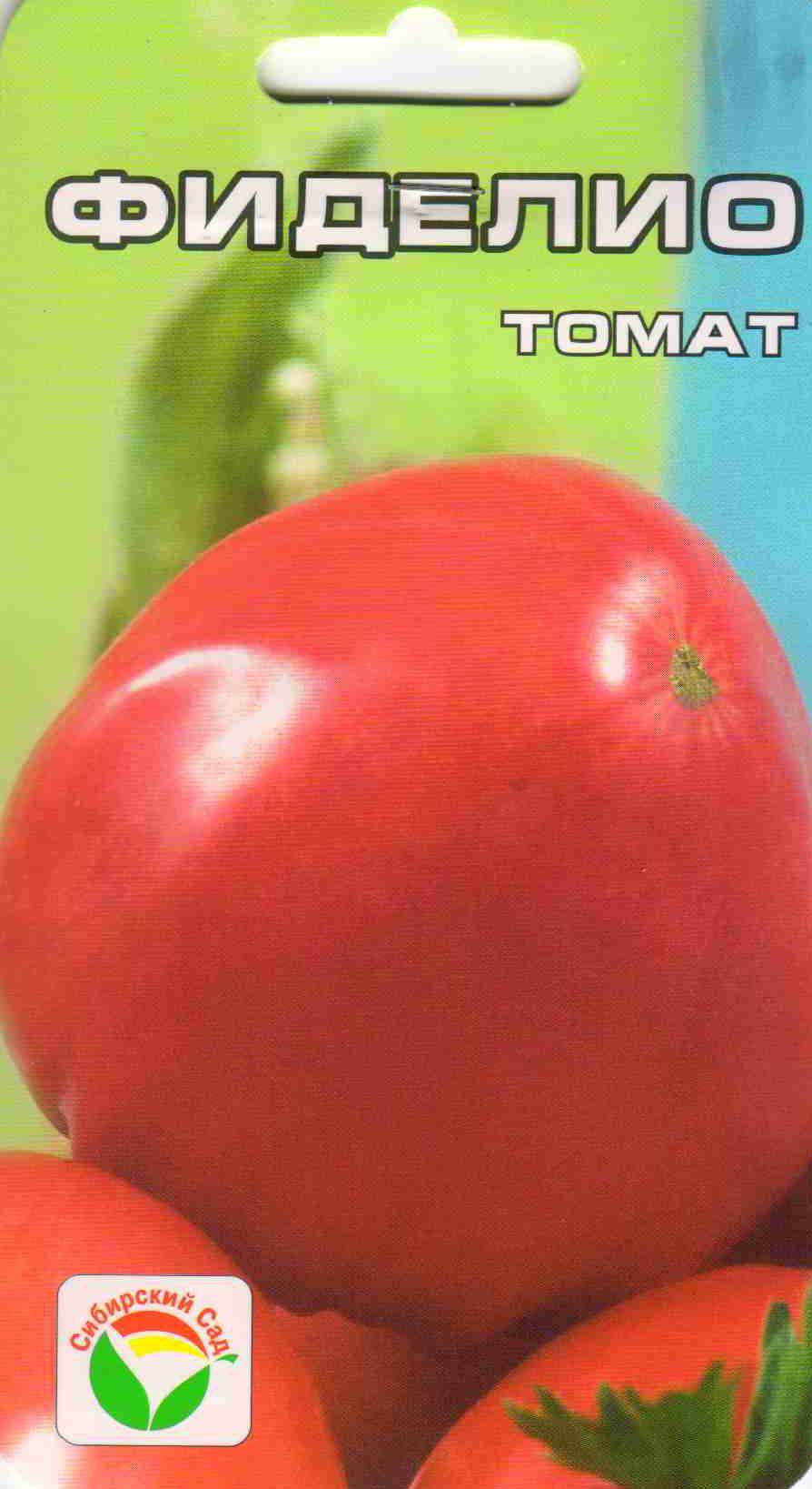 Томат фиделио: характеристика и описание сорта с фото
