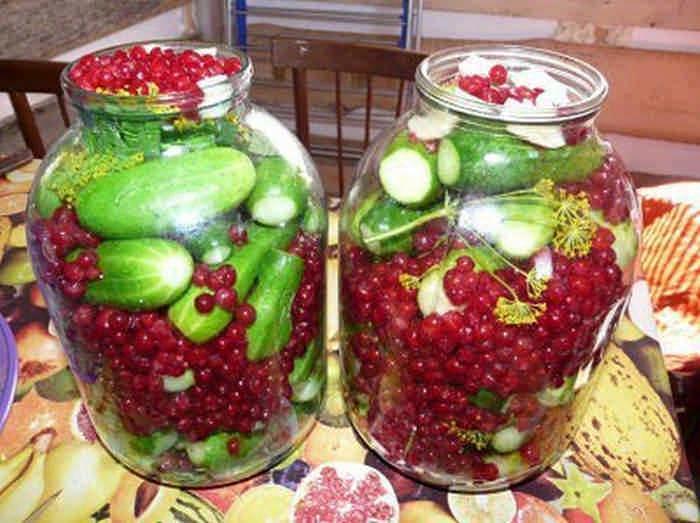 Консервация на зиму огурцов с ягодами красной смородины