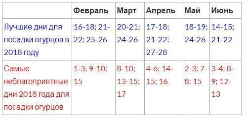Благоприятные дни для посадки огурцов в мае 2021 года по дням с учетом лунного календаря и региона выращивания