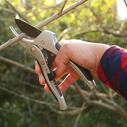Как выбрать садовый секатор для обрезки деревьев (для прививки и пр.)