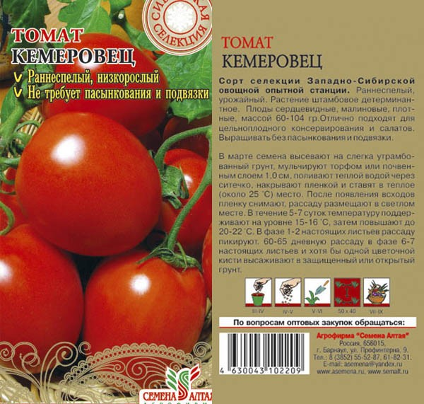 Лучшие томаты сибирской селекции: очень урожайные для теплиц и открытого грунта