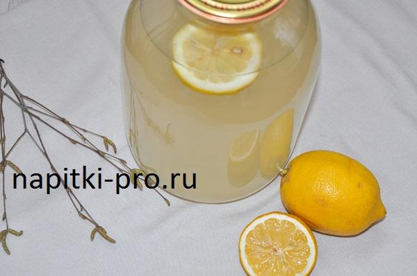 Как законсервировать березовый сок с лимонной кислотой