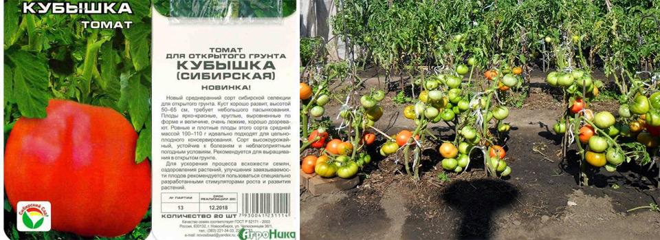 """Томат кубышка - описание сорта, отзывы, урожайность - журнал """"совхозик"""""""