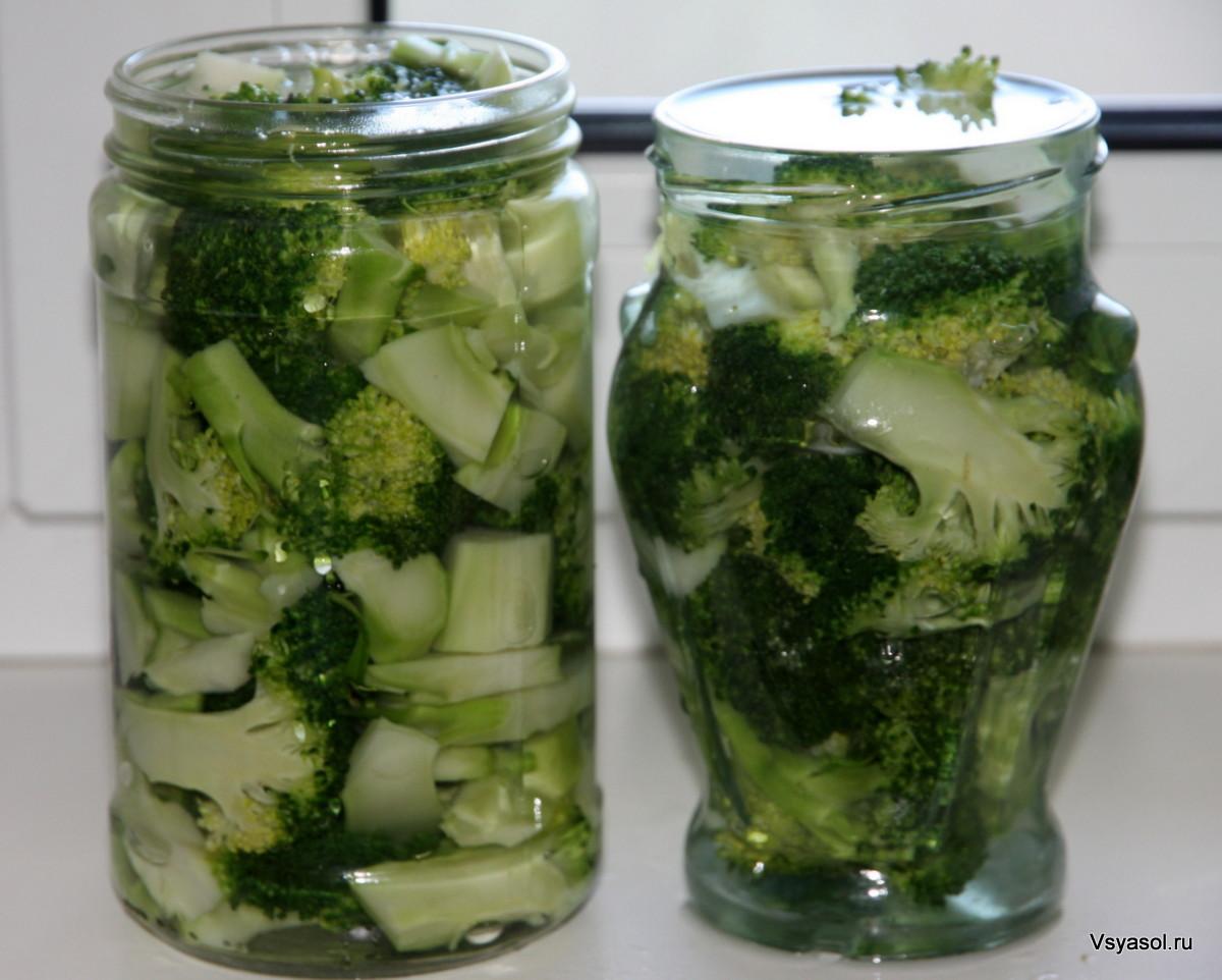 Заготовки из капусты брокколи на зиму рецепты