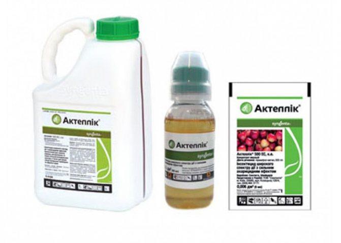 Инсектоакарицид актеллик: инструкция по применению смачиваемого порошка и концентрированной эмульсии, меры безопасности при обработке растений