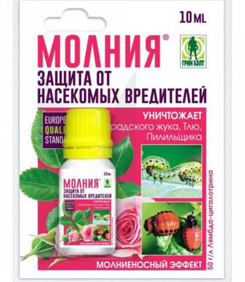 Жукоед: новый инсектицид для лпх против колорадского жука